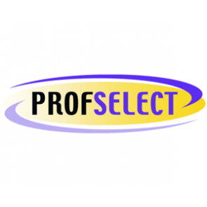 DVD+R 4.7GB 16X Profselect 100 stuks